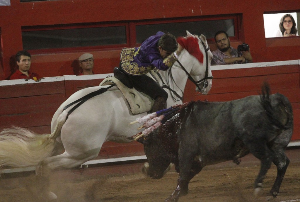 Guillermo Hermoso, albino, 1-3-19