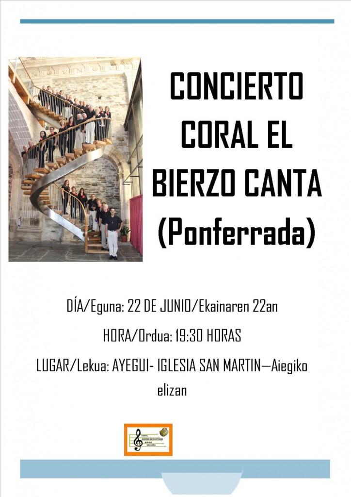 Ayegui, concierto Bierzo, 18-6-19