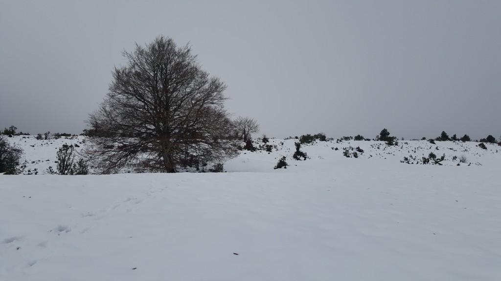 Monte Dulantz, 3, 10-11-19