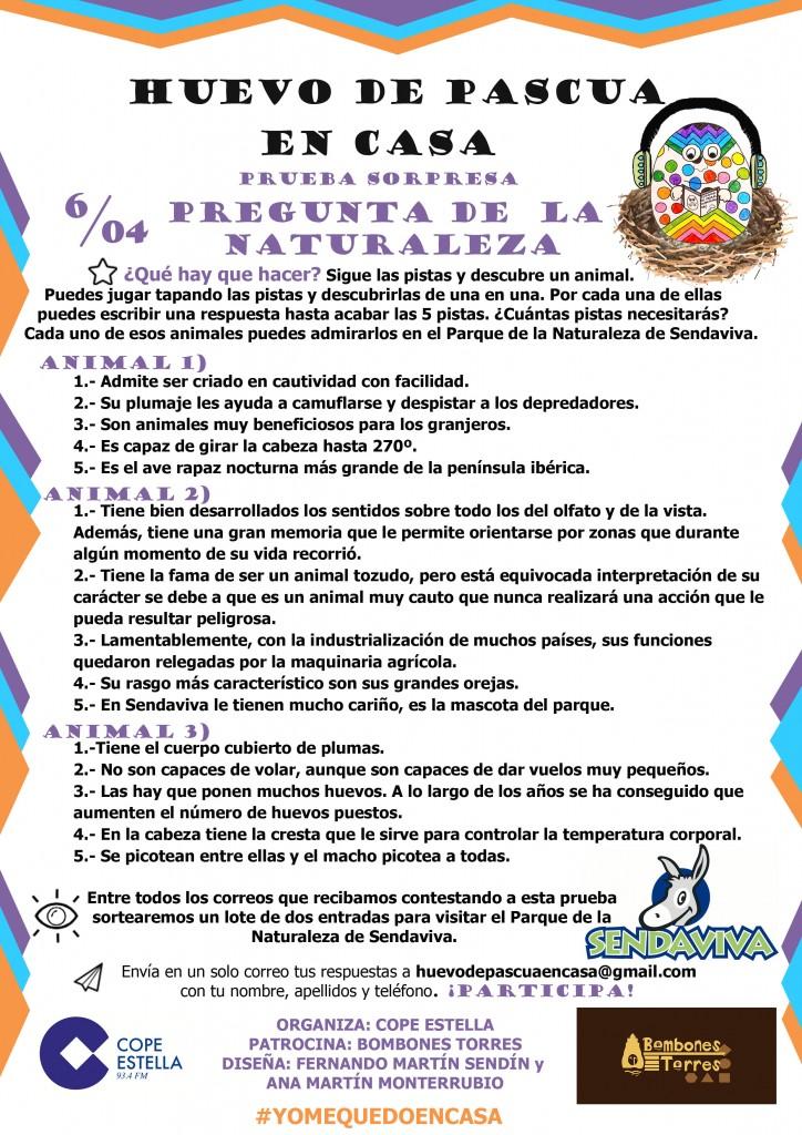 PRUEBA 9 06/04/2020